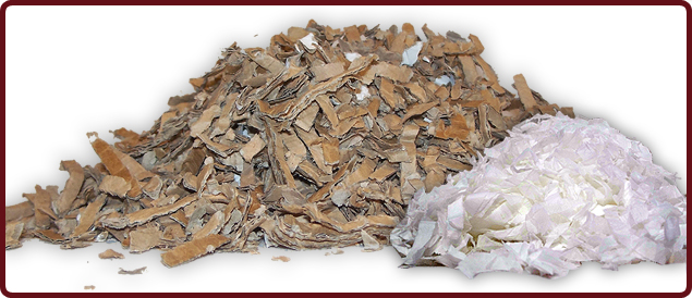 Hedgehog Bedding : FinaCARD Maxibale + Sofnest Tissue Flakes